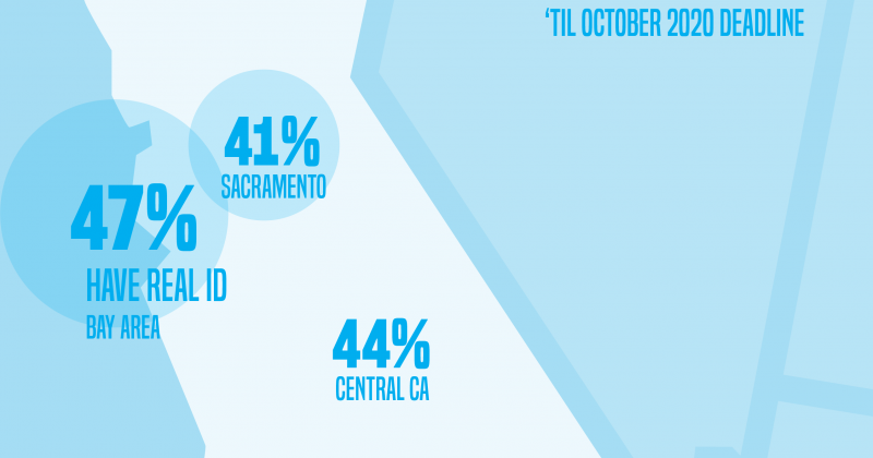 Real ID California Survey Results